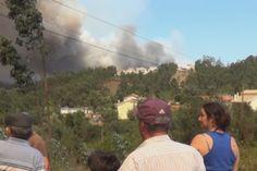 Incêndio do Buçaco ameaça Mata Nacional