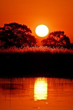 Sunset in Okavango