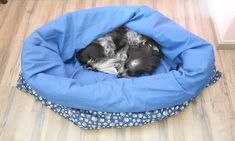 Sweet Dog bed/cat bed/sleeping bag/cuddle bag, size L, blue, skulls, cotton Your Best Friend, Best Friends, Friends Are Like, How To Make Bed, Sleeping Bag, Four Legged, Cuddling, Bean Bag Chair, Colours