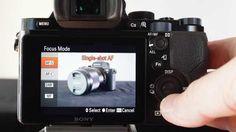 Back-Button AF using a Sony Alpha A7 camera