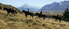 Horse trekking around mt Cook, New Zealand Great Places, Places To Go, Mountain America, British Isles, Horseback Riding, Snorkeling, Scuba Diving, Trekking, New Zealand