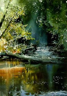 Morning on the Yellowdog River by watercolor artist Nita Engle available from Snow Goose Gallery