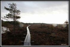 Torronsuo , Tammela , Suomi Finland