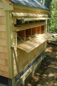 more ideas - hatch behind chicken poop boards under roosts that could be cleaned so droppings go directly into compost bins underneath? #chickencoopideas #chickencoopdiy