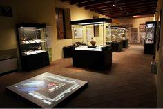Una delle sale del Museo dei Brettii e degli Enotri