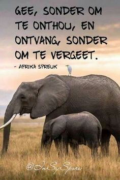 All Quotes, Best Quotes, My True Love, My Love, Afrikaans Quotes, Marriage Relationship, Relationships, Uplifting Words, Saved Items