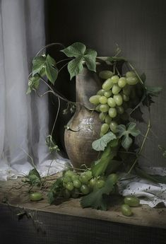 Green Grapes, Vine Leaves & Pewter Still Life . Olive Green Color, Green Colors, Green And Grey, Painting Still Life, Still Life Art, Still Life Photography, Art Photography, Fruit Painting, Still Life Photos