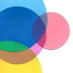 Paper Collage x Sophie Filomena
