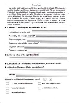 Bakné Moldoványi Anikó könyvéből, 1 oldalasra átdolgozva Home Learning, Kids Education, Grammar, Worksheets, Language, Teacher, Writing, Reading, School