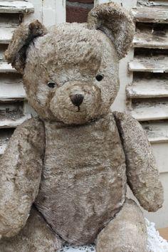 Teddy Bear......old bear...