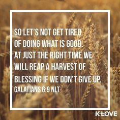 ENCOURAGING WORD via @kloveradio  And let us not grow weary while doing good for in due season we shall reap if we do not lose heart. Galatians 6:9 NKJV  http://ift.tt/1H6hyQe  Facebook/smpsocialmediamarketing  Twitter @smpsocialmedia  #Bible #Quote #Inspiration #Hope #Faith #FollowMe #Follow #VOTD #Klove #truth #love #picoftheday #instapic