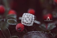 Sedinta foto logodna - I Do - fotograf profesionist Andreia Gradin Druzy Ring, Engagement Photography, Diamond Earrings, Jewelry, Fashion, Diamond Studs, Jewellery Making, Moda, Jewellery
