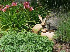 more garden bunnies