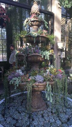 "osmiumartistry: "" Succulent Fountain at Longwood Gardens "" Succulent Landscaping, Succulent Gardening, Garden Planters, Planting Succulents, Garden Art, Garden Design, Succulents In Containers, Container Plants, Outdoor Garden Decor"
