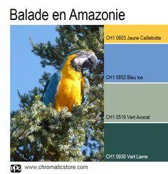 Une palette de #teintes chatoyantes rappelant les richesses de la flore et de la faune des forêts #tropicales. www.chromaticstore.com