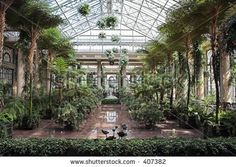 Greenhouse Ceiling Conservatory Longwood Gardens Stock Photo 407382 - Travel Photos