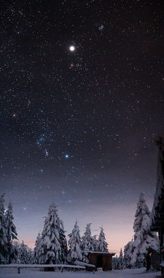 lori-rocks:    Starry Sky by Dmitry Storozhenko