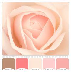 Pink Vintage Color Palette