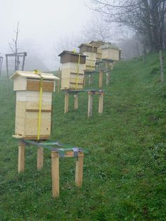 Beekeeping with the Warré hive -- Sumps and other floor/stand modifications