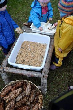 Making bird feeders - Stumping in the Mud ≈≈