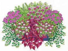 Helga Meyer, Illustration zum Thema Garten