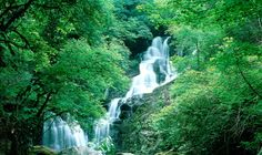 Torc Waterfall, County Kerry - Ireland