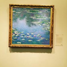 Water lilies - Claude Monet  - Art institution of Chicago - March, 2016