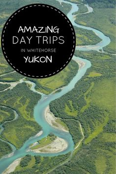 From dog sledding and horseback riding to Northern Lights viewing and glacier flight seeing, here are the best day trips from Whitehorse, Yukon, Canada. Canada North, Western Canada, Beautiful Places To Visit, Places To See, Northern Lights Viewing, Yukon Canada, Yukon Alaska, Canadian Travel, Canadian Rockies