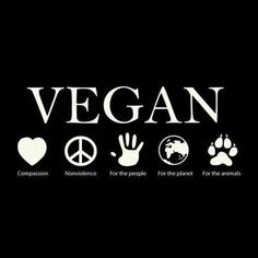 Animal Rights #vegan #compassion