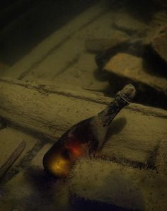 Unopened 200 year old champagne bottle in a Baltic Sea shipwreck..............   ................................♥...Nims...♥