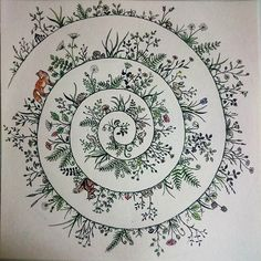 Die Spirale in (zart) bunt. Viel anmalen konnte man nicht, weil alles so winzig … The spiral in (tender) colorful. Doodles Zentangles, Zentangle Patterns, Wreath Drawing, Painting & Drawing, Doodle Drawings, Doodle Art, Spiral Drawing, Dibujos Zentangle Art, Art Graphique