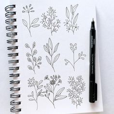 """360 Likes, 4 Comments - Studio 80 Design (@studio80design) on Instagram: """"A little greenery study today """""""