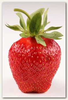 How To Go About Setting Your Daily Nutrition Goals Strawberry Fields Forever, Strawberry Hill, Food Alphabet, Strawberry Decorations, Fruit Picture, Fruits Images, Fruit Photography, Fruit Recipes, Creative Food