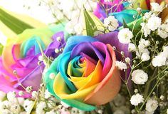 For My Artist /Gardener/ Chef ...Dad.  When you have the rainbow for color, you don't need anything else...
