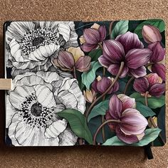 """Alice on Instagram: """"▫️Anemones + hellebores▫️ . Anemones in black and white and hellebores in colours. . . I opened the picture on @procreate app (I use the…"""" Floral Drawing, Mandala Drawing, Toned Paper, Plant Art, Art Journal Pages, Art Club, Botanical Art, Doodle Art, Foto E Video"""