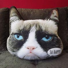 Confira aqui - Almofada - Gato Happy - Mo Cuishle