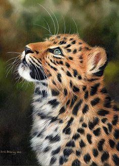 Leopard Cub, Baby Leopard, Cheetah Animal, Wildlife Paintings, Wildlife Art, Wall Paintings, Big Cats Art, Cat Art, Exotic Cats