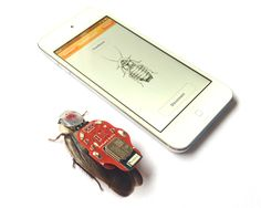 Yey! You Can Really Remote Control A Roach from Your Smart Phone
