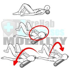 Foam Rolling the Head and Neck Benefits: Releases tension in neck from repetitive movements in driving computer work and texting. Helps to correct Forward Head Alignment and Upper Cross Syndrome. Assists to develop proper Spinal alignment and stability. Select Exercise RX: Hold and Release Apply pressure to sensitive area for 5-30 seconds or until sensitivity dissipates. Include Oscillations Turn the Head every 2-3 seconds for 15-30 Seconds. Target Area: Neck and Back of the Head aka Subo