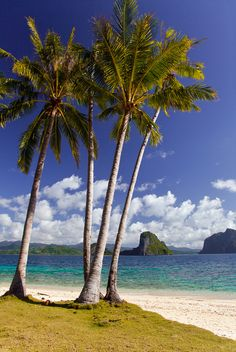"El Nido Beach Paradise - Pinagbuyutan Island, Palawan, Philippines. BBC Boracay says: "" Some many places to discover - so many things to do - so many wonderful people to meet. Amazing Philippines.."""