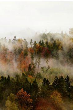 nordvarg:  Fog byJan Kvasnička               autumn blog all year round that follows back☾☯✿