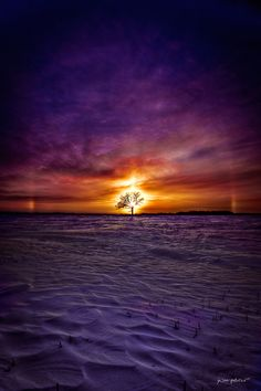 ~~Vibrant Prairie | violet winter landscape, Dauphin, Manitoba, Canada | by jay-peg~~