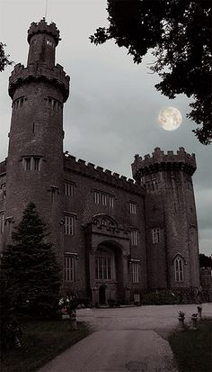 """"""" This is a picture of Charleville Forest castle, which is rumored to be haunted…"""