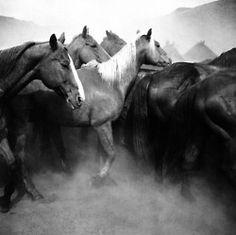 mastersofphotography:  Adam Jahiel