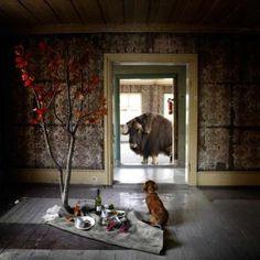Steinar Christensen - Mor og Barn Mother And Child, Still Life, Projects To Try, Barn, Fine Art, Painting, Home Decor, Mother Son, Homemade Home Decor