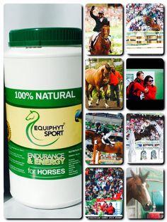 Equiphyt Sport WEG