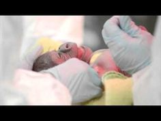 Baby Gorilla Born in Rare C-section - cute -YouTube Video - March 2014