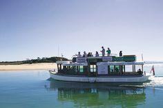 Eco Cruise Noosa