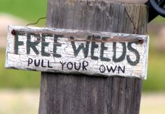 Free Weeds .. Pull Your Own