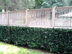 Capped Cedar Picket Pool Fence